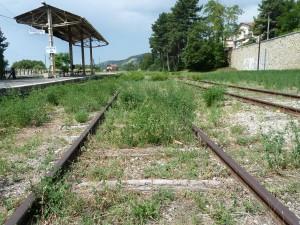 Depuis vingt ans, les herbes folles tapissent le ballast entre Digne et St Auban-Château Arnoux (© Pierre Nouvelle).