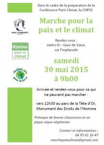 marche-Lyon-30mai2015