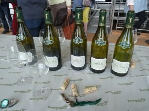 Cinq appellations et de nombreux climats constituent la marque du cru chablis et de ses vions blancs issus de cépage chardonnay (© Pierre Nouvelle).