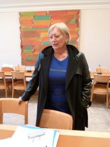 En octobre 2013, une délégation centriste animée par la sénatrice Catherine Morin-Desailly, avait reçu les journalistes CFDT (© Pierre Nouvelle).