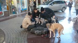 Rue Victor Hugo à Lyon, un ancien salarié malade devenu SDF, deux chiens et deux jeunes filles prises de pitié (© Pierre Nouvelle).