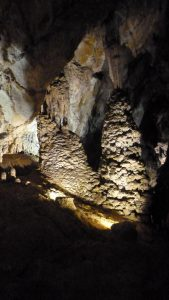 Stalactites, stalagmites, draperies, concrétions en chou-fleur comme ici donnent un intérêt évident à la découverte de cette grotte (© Pierre Nouvelle).