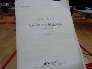 Le 20 mai 2017, le parc des expositions L'Eduen à Autun (Saône-et-Loire) accueillera la cantate Carmina Burana. Plus de 300 interprètes sont attendues ainsi qu'un millier de spectateurs (© Pierre Nouvelle).