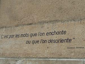 Femme politiquer, ministre, écrivaine, artisane du mot (© Pierre Nouvelle).