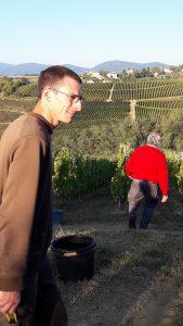 Adrien, salarié de l'exploitationFrançois et fils est un aide précieux pour les vendangeurs novices (© Pierre Nouvelle).