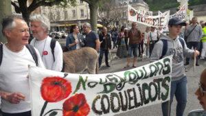 Pour la 8e fois depuis octobre 2018, la population française est appelée à dire son e,vie de voir subsister les coquelicots ( © Pierre Nouvelle ).