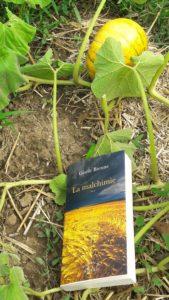 Un roman; témoignage de la nuisance extrême des produits phytosanitaires pour la santé de l'homme ( © JPierre Nouvelle )