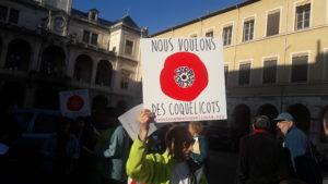 Les préoccupations écologiques ont renforcé une mobilisation qui pourra se traduire lors des élections ( © Pierre Nouvelle ).