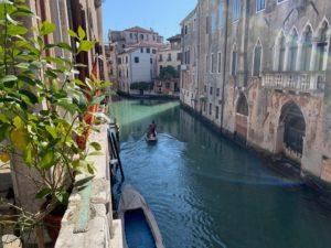 Sous l'influence du coronavirus, Venise offre un autre visage, Jadis polluée par le trafic incessant, les eaux des canaux sont redevenues limpides ( © DR/ Ariel Butaux sur Facebook ).